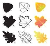 Colección de la hoja del otoño Fotografía de archivo