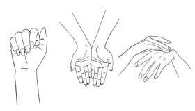 Colección de la mano en el fondo blanco Imagen de archivo libre de regalías