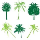 Colección de la palma para su diseño Stock de ilustración