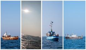 Colección de la pesca en mar Imagen de archivo