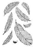 Colección de la pluma para su diseño libre illustration
