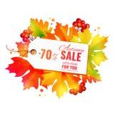 Colección de la venta del otoño Imágenes de archivo libres de regalías