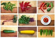 Colección de la verdura de la caída Fotografía de archivo libre de regalías