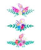 Colección de las flores y de las hojas de la acuarela Fotos de archivo libres de regalías