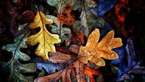 Colección de las hojas de otoño Foto de archivo