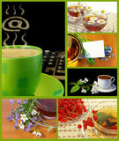 Colección de las tazas del café y de té Fotos de archivo libres de regalías
