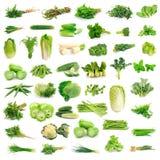 Colección de las verduras Fotografía de archivo libre de regalías