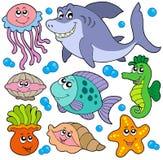 Colección de los animales acuáticos Imágenes de archivo libres de regalías