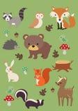 Colección 3 de los animales del bosque - ejemplo del vector Fotos de archivo libres de regalías