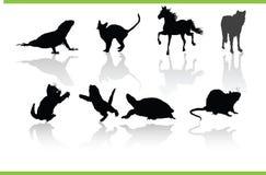 Colección de los animales del vector fotos de archivo