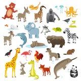 Colección de los animales de la historieta fotos de archivo