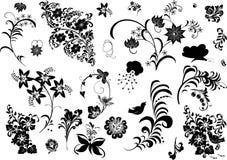 Colección de los elementos del follaje Imagen de archivo libre de regalías