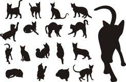 Colección de los gatos Ilustración del Vector