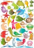 Colección de los pescados ilustración del vector