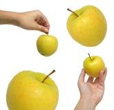 Colección de manzanas Fotografía de archivo
