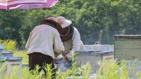 Colección de miel en el colmenar Fotos de archivo