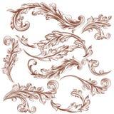 Colección de ornamentos florales dibujados mano del vector para el diseño Fotos de archivo libres de regalías