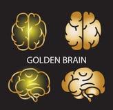Colección de oro geométrica del cerebro en fondo negro ilustración del vector