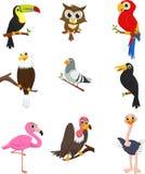 Colección de pájaros lindos en una rama de árbol stock de ilustración