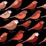 Colección de pájaros rojos que miran a la derecha Ejemplo del vector en fondo negro Imagen de archivo