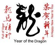 Colección de palabras chinas del festival de resorte Fotografía de archivo