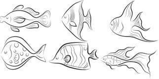 Colección de pescados. Foto de archivo