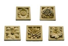 Colección de piedra de la flora Imagen de archivo