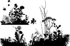 Colección de plantas ilustración del vector