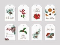 Colección de plantillas de la etiqueta o de la etiqueta de la Navidad adornadas con las plantas estacionales - ramas y conos de á stock de ilustración