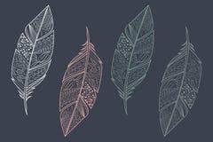 Colección de plumas coloridas dibujadas mano étnica tribal del vintage ilustración del vector