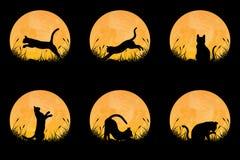 Colección de silueta del gato en diversa postura en campo de hierba con el fondo de la Luna Llena stock de ilustración