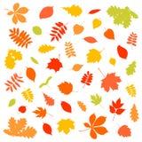 Colección de siluetas coloridas de la hoja en el fondo blanco libre illustration