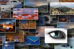Colección de varias fotos comunes Imagenes de archivo
