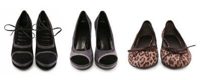 Colección de varios tipos de zapatos femeninos Imágenes de archivo libres de regalías