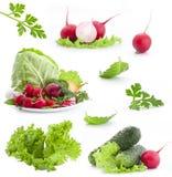 Colección de verduras frescas fotos de archivo