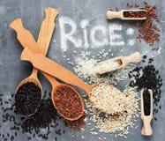 Colección del arroz Fotos de archivo libres de regalías