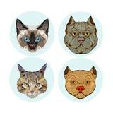 Colección del avatar del gato y del perro Foto de archivo