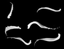 Colección del chapoteo de la leche, aislada en negro Fotografía de archivo libre de regalías