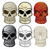 Colección del cráneo Imagenes de archivo
