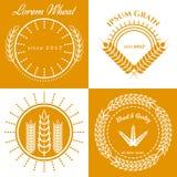 Colección del diseño del logotipo del concepto de los oídos del grano Fotos de archivo libres de regalías
