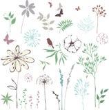 Colección del diseño floral stock de ilustración