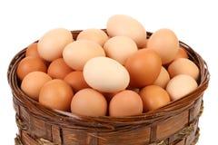 Colección del huevo aislada Fotografía de archivo libre de regalías