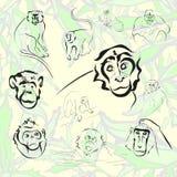 Colección del mono y del mono Ilustración del vector Imagenes de archivo