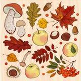 Colección del otoño ilustración del vector