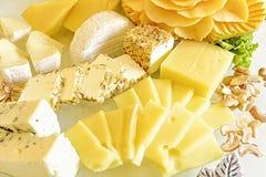 Colección del queso y anacardos Fotografía de archivo libre de regalías