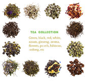 Colección del té Fotos de archivo libres de regalías