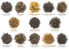 Colección del té negro foto de archivo