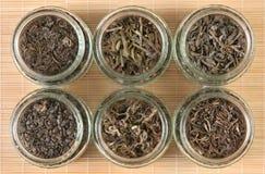 Colección del té verde Imagenes de archivo