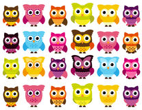 Colección del vector de búhos lindos y coloridos stock de ilustración