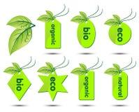 Colección del vector de etiquetas engomadas ecológicas Imagen de archivo